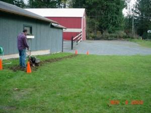 Creating front garden 2004