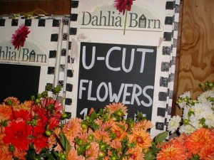 U-Cut flower sign