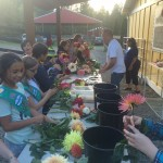 Girl Scouts learning all about dahlias