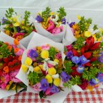 In Season Flowers-July