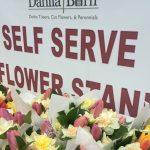 Self Serve Stand