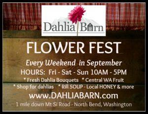 Dahlia Barn Flower Festival